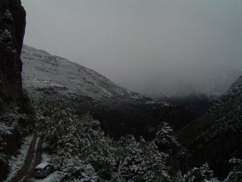 jour gris de neige
