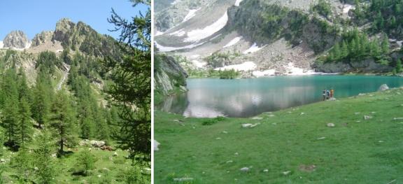 cougourde lac névé
