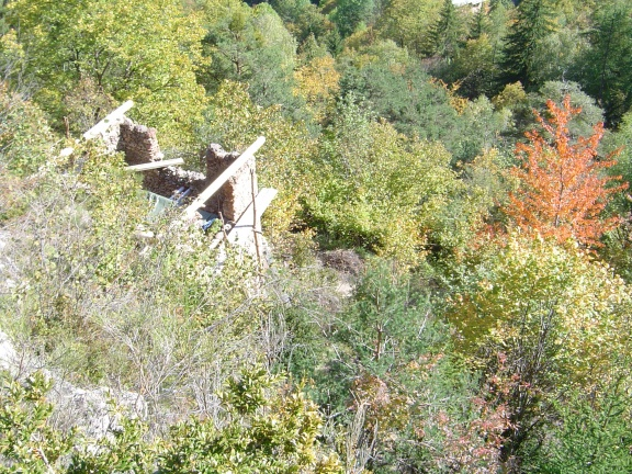 Ch 8 novembre 2005 merisier