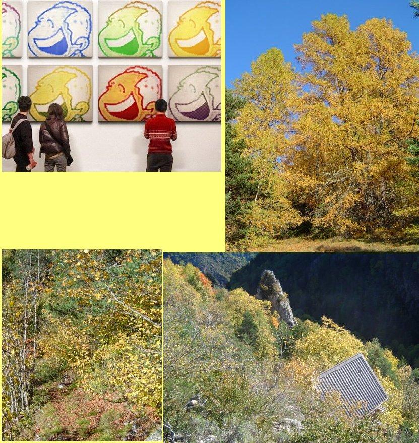jaune trois