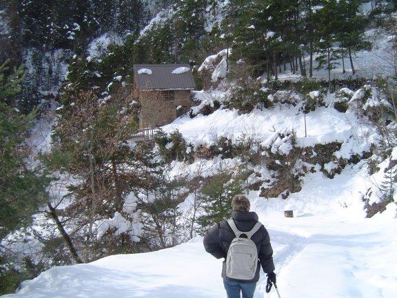 grange 60 cm neige